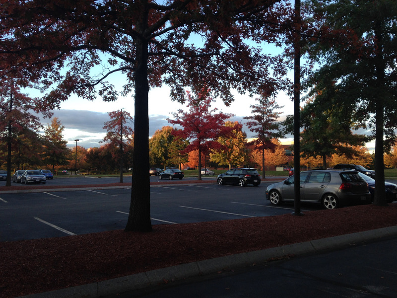 parking lot with colorful trees