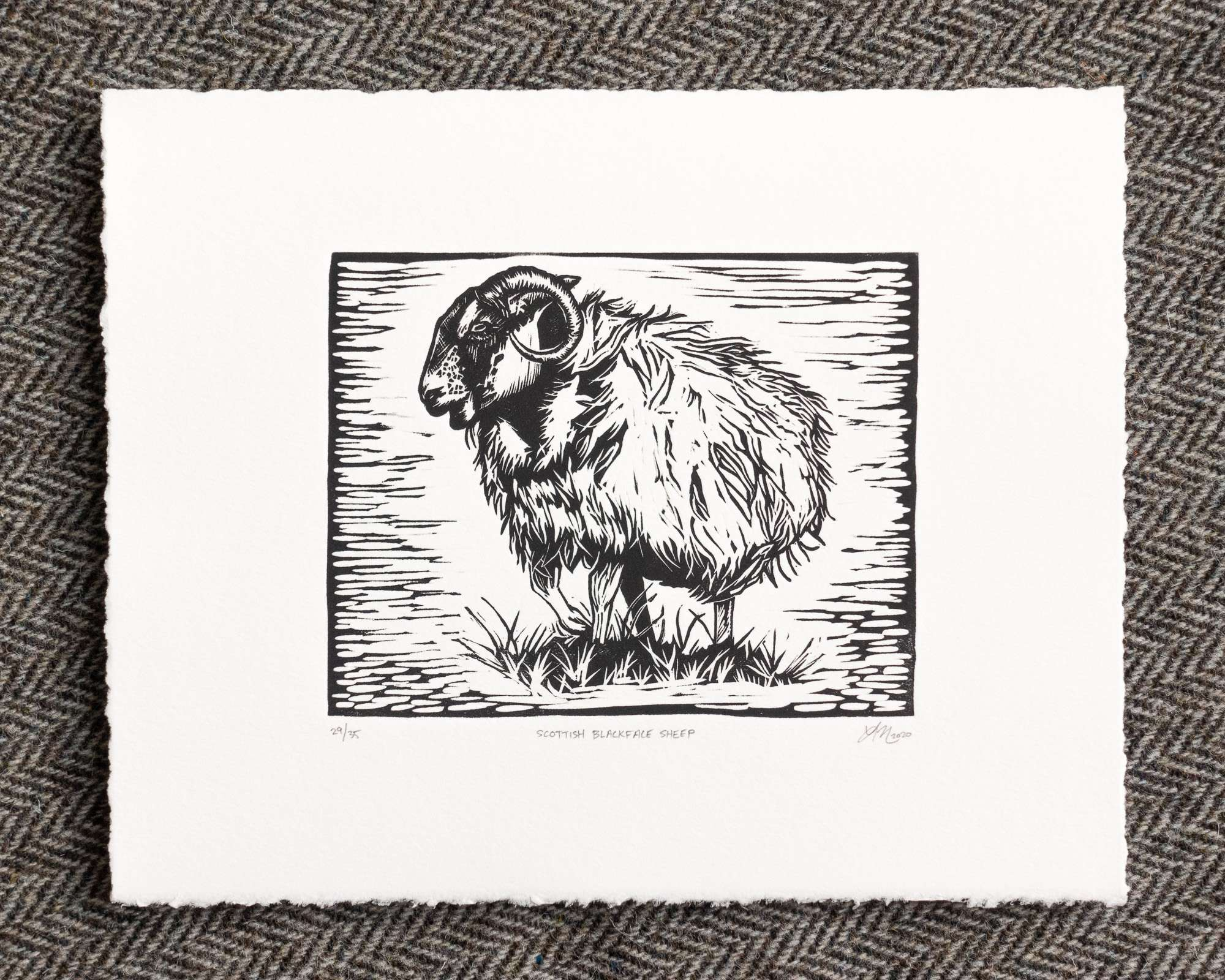 A print of a black and white sheep standing on grass within a black border, printed on white paper; the background of the scene has horizontal chatter (ink streaks).